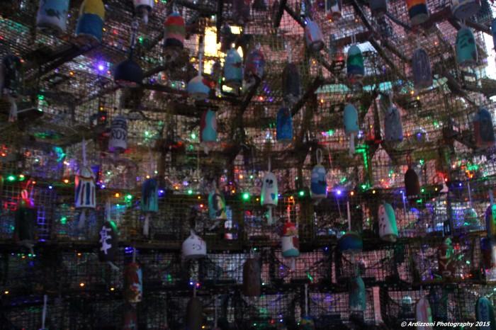 December 19, 2015 Inside the Lobster Trap Tree
