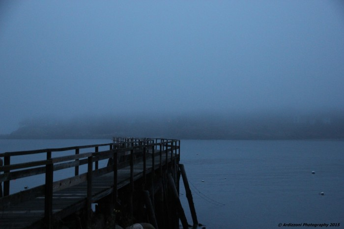 December 23, 2015 Magnolia Pier in the fog