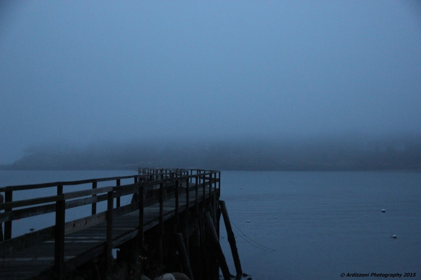 December 23, 2015 Magnolia Pier in the fog