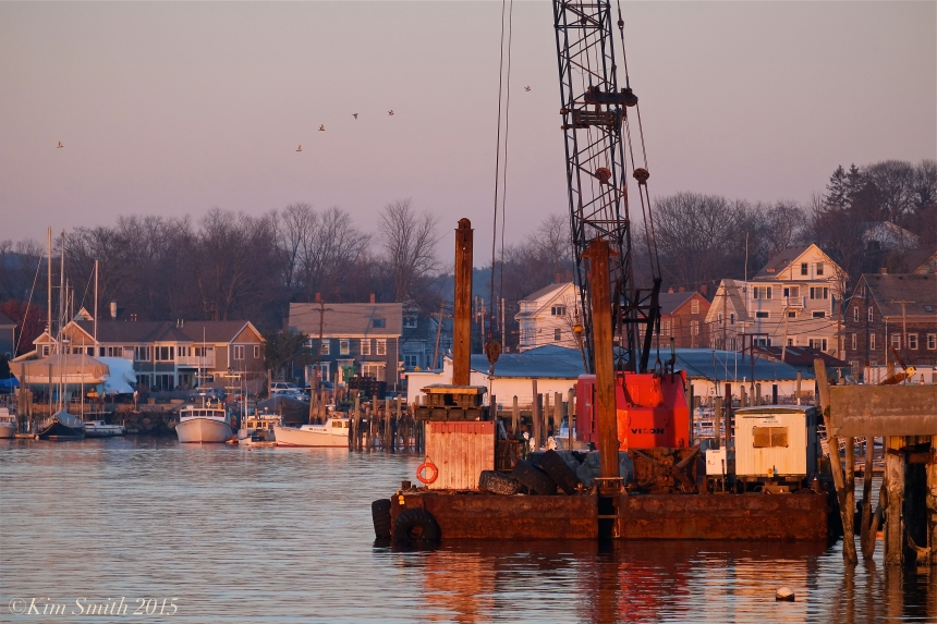 Gloucester harbor crane ©Kim Smith 2015