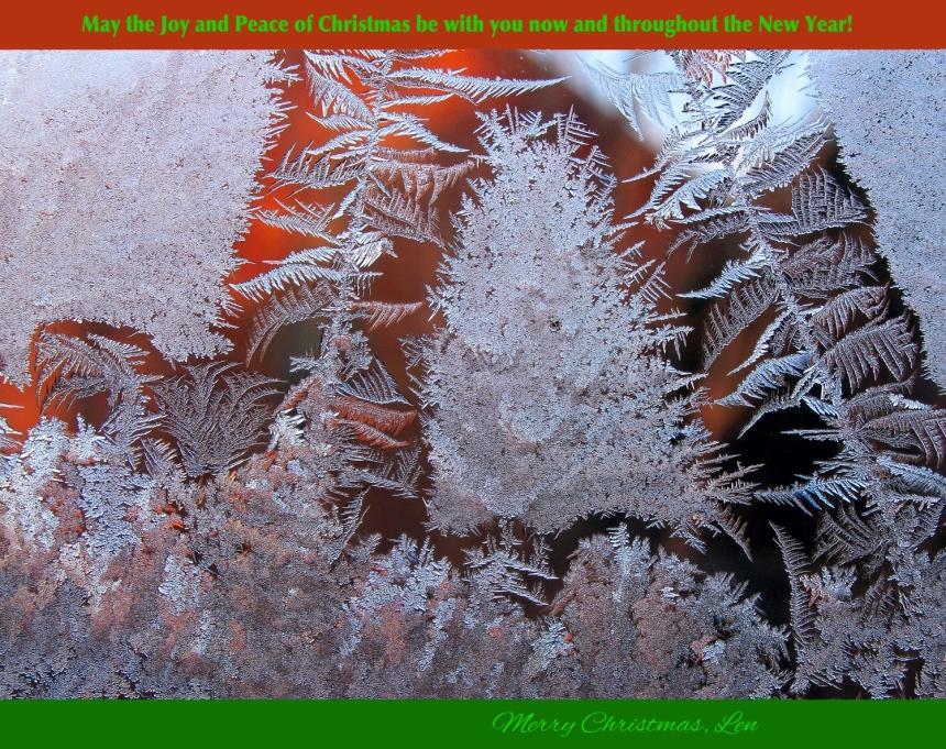 IceCrystals(J1)1-7-15_0240