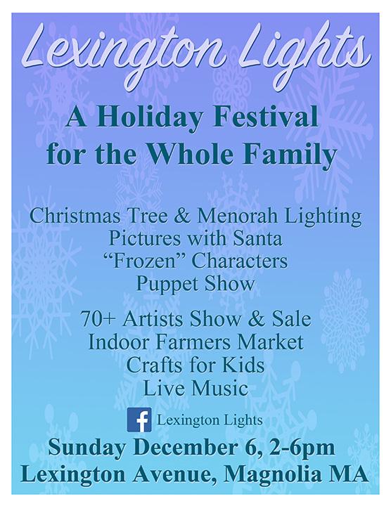 Lexington Lights 2015 Flyer.jpg
