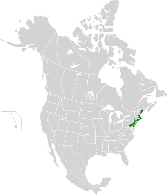 Northeastern_coastal_forests_map.svg