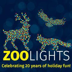 zoolights_box