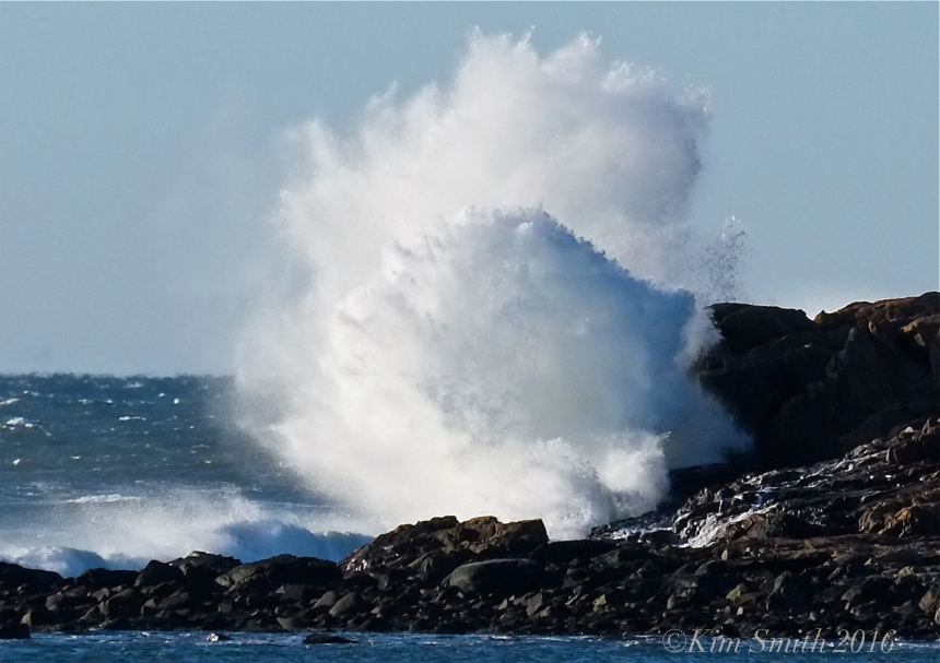 Brace Cove Eastern Point Atlantic Ocean Waves -2 ©Kim Smith 2016