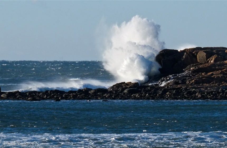 Brace Cove Eastern Point Atlantic Ocean Waves ©Kim Smith 2016