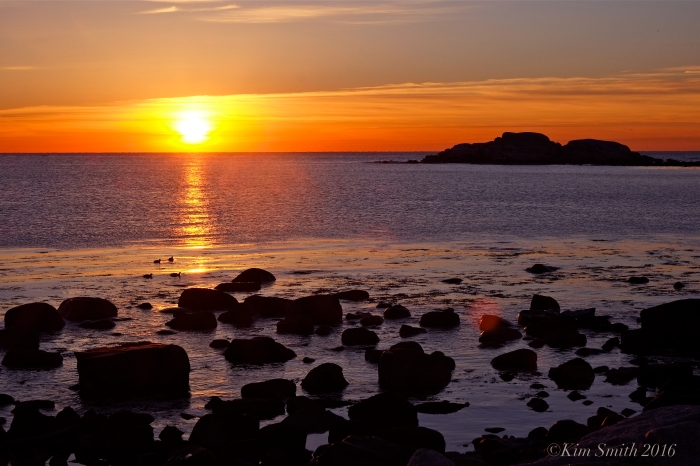 Brace Cove Sunrise Eastern point ©Kim Smith 2016