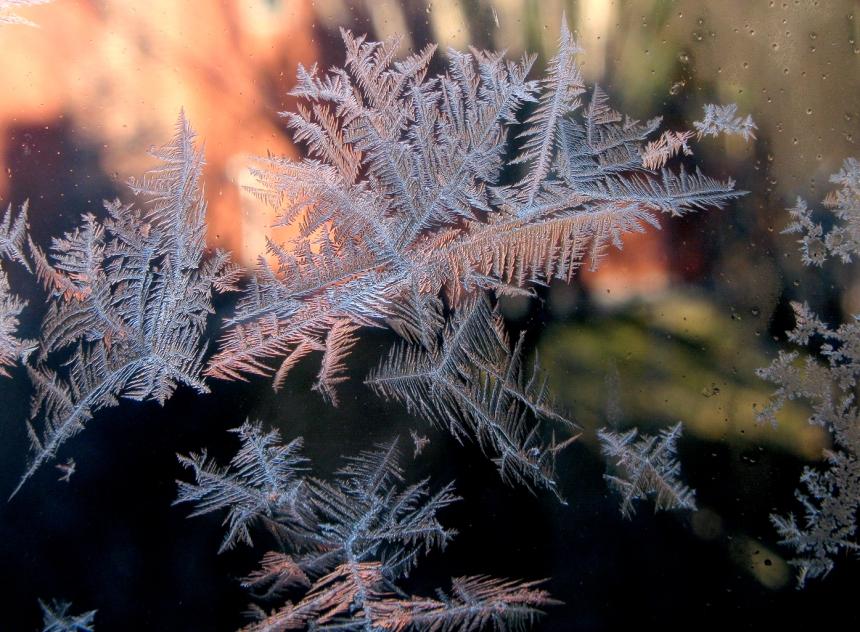 IceCrystals1-5-16_0126