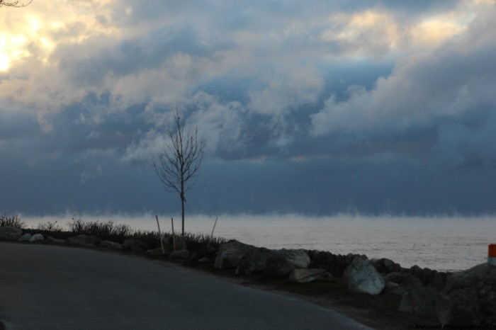 January 5, 2016 Sea smoke on from Shore Road