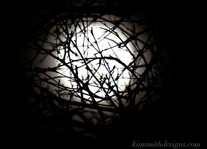 Snow Moon February Niles Pond Birch Tree kimsmithdesigns.com 2016 -4