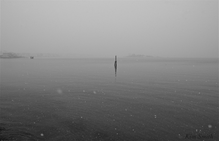 Gloucester Harbor snowy day -3 Kim Smith 2016. JPG