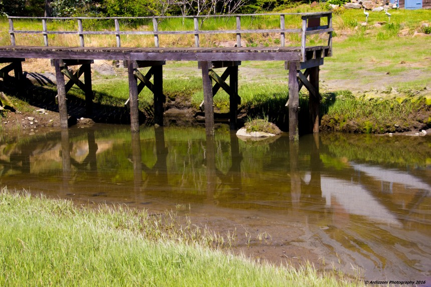 May 23, 2016 low tide on Little River