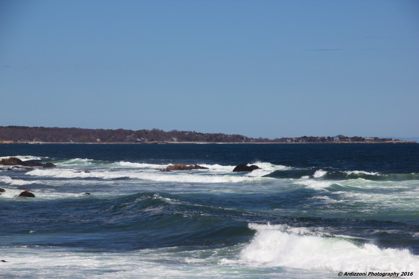 May 6, 2016 Back Shore happy to see the sun