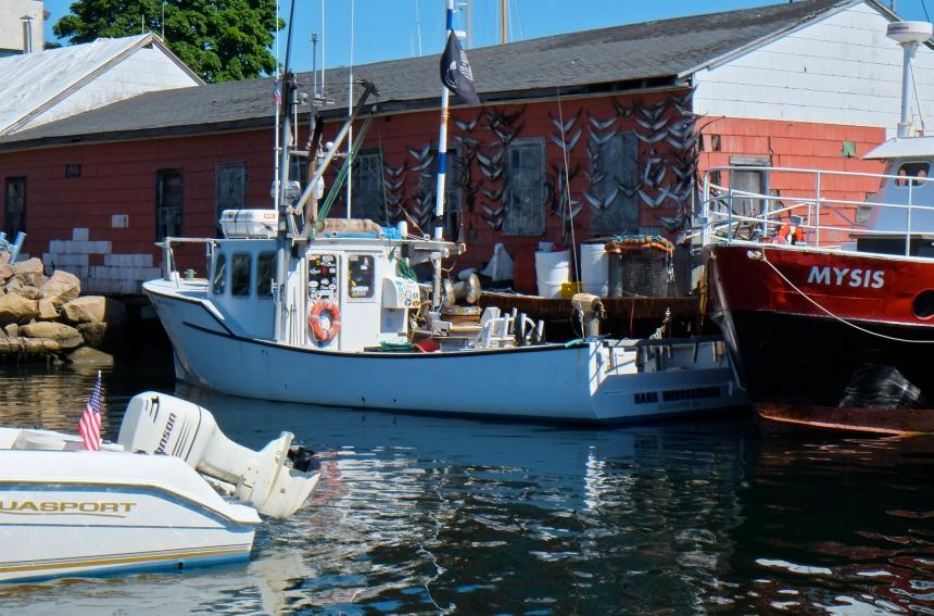 Harbor Tour with Mayor Romeo Theken -9 copyright Kim Smith