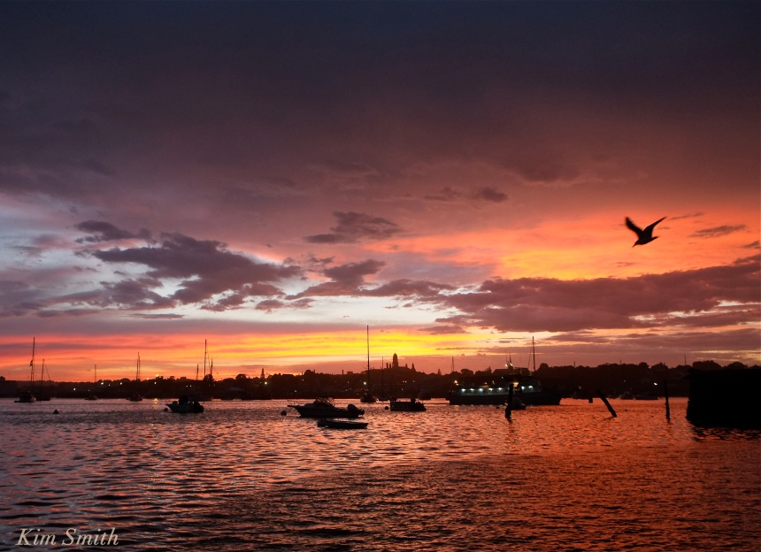 Gloucester Harbor sunset -2 copyright Kim Smith