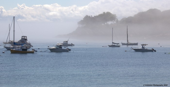 July 5, 2016 fog lifting in Magnolia Harbor