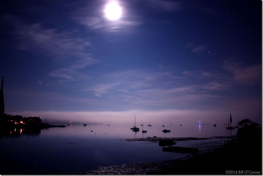 Midnight_Harbor