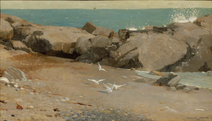Winslow Homer Rocky Coast and Gulls (manchester)