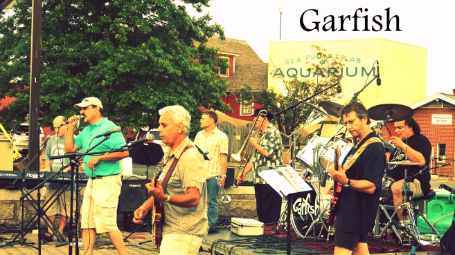garfish-ff.jpg hl