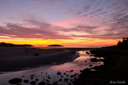 Good Harbor beach sunrise August 17, 2016 -2 copyright Kim Smith