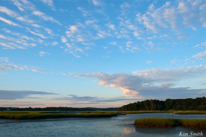 Jones River Salt Marsh Gloucester copyright Kim Smith