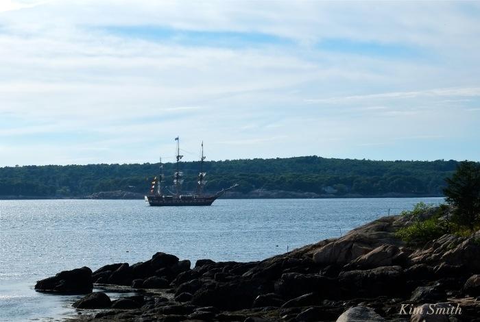 Oliver Hazard Perry RI Tall ship Gloucester harbor copyright Kim Smith