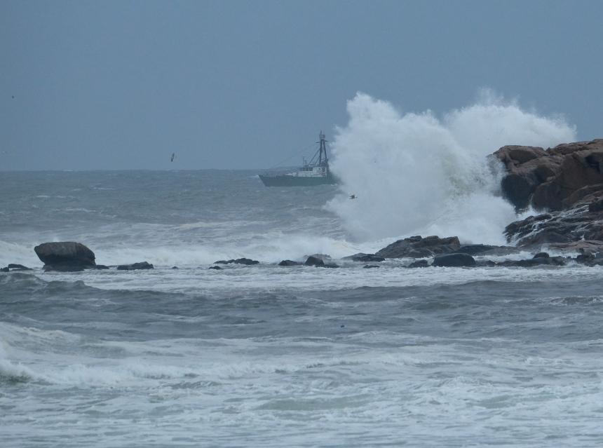Fishing Boat Hermine Brace Rock Gloucester -1 copyright Kim Smith