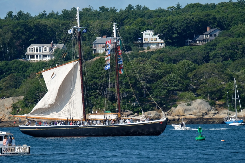 gloucester-schooner-festival-2016-schooner-adventure-raising-sail-copyright-kim-smith