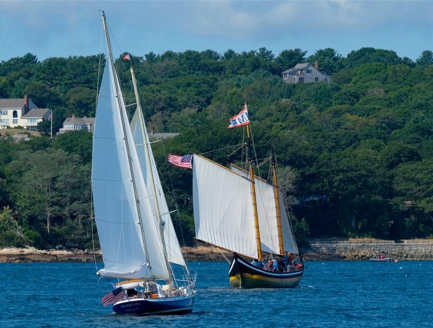 gloucester-schooner-festival-2016-schooner-narwhal-schooner-fame-copyright-kim-smith