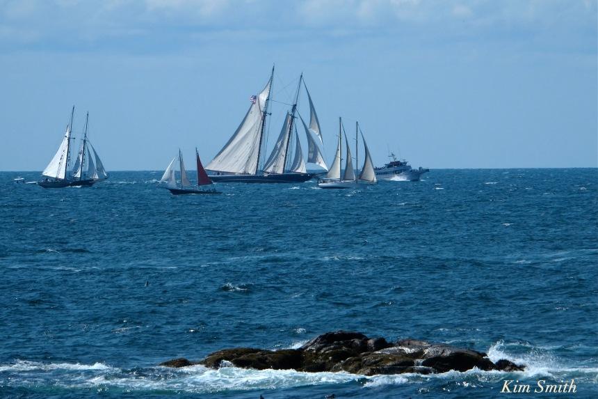 gloucester-schooner-race-2016