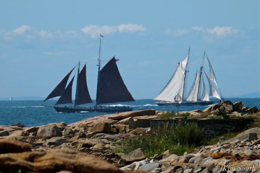 gloucester-schooner-race-roseway-2016