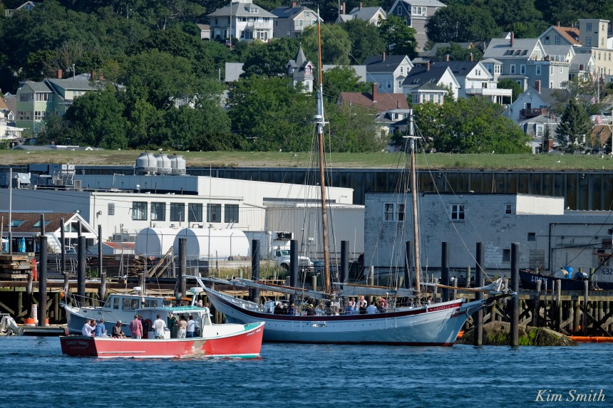 Stanley Thomas lobster boat Ardelle Schooner Gloucester Schooner Festival copyright Kim Smith