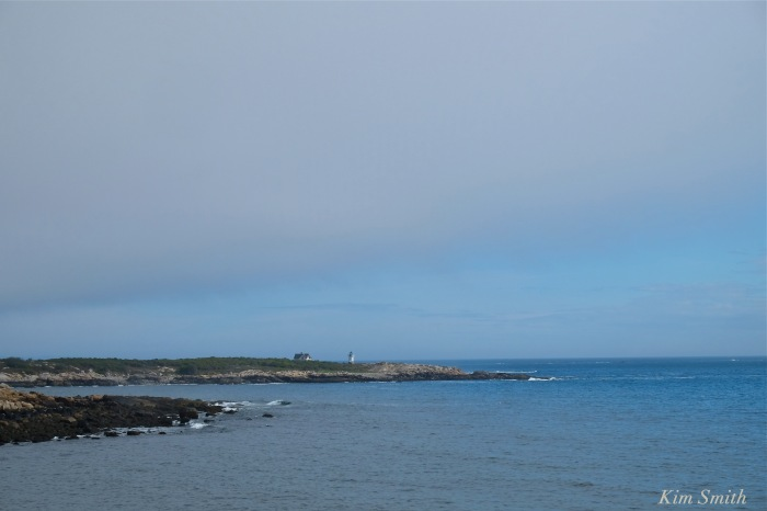 straitsmouth-island-and-lighthouse-copyright-kim-smith