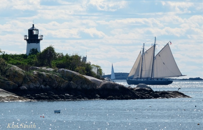 trails-and-sails-schooner-adventure-3-copyright-kim-smith