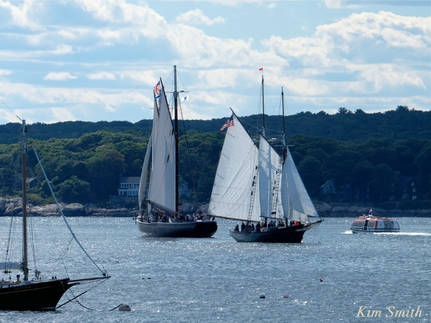 trails-and-sails-schooner-adventure-schooner-lannon-copyright-kim-smith
