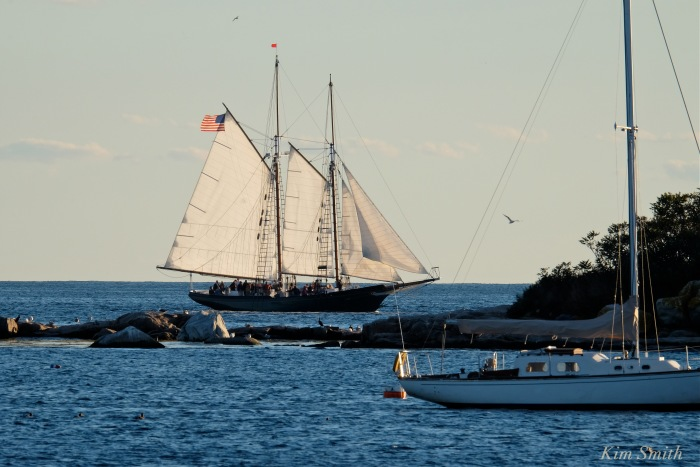 trails-and-sails-schooner-lannon-3-copyright-kim-smith