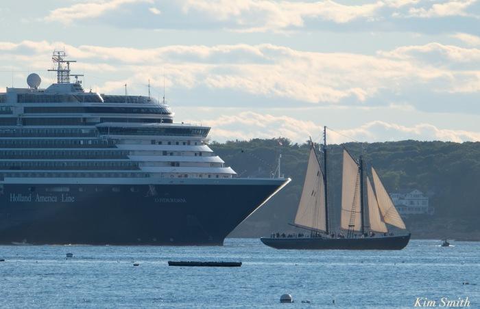 zuiderdam-cruise-ship-gloucester-harbor-massachusetts-usa-schooner-adventure-copyright-kim-smith