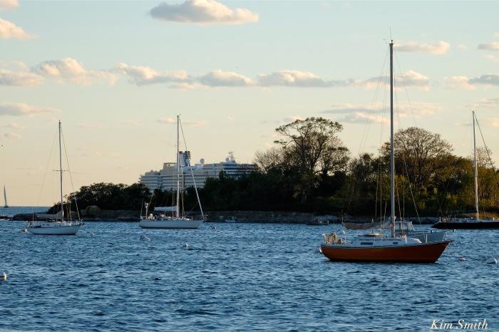 zuiderdam-cruise-ship-gloucester-harbor-massachusetts-usa-ten-pound-island-copyright-kim-smith