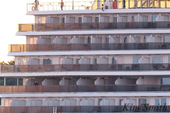 zuiderdam-rear-window-2-copyright-kim-smith