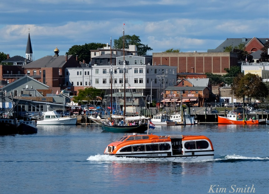 zuiderdam-shuttle-gloucester-ma-copyright-kim-smith