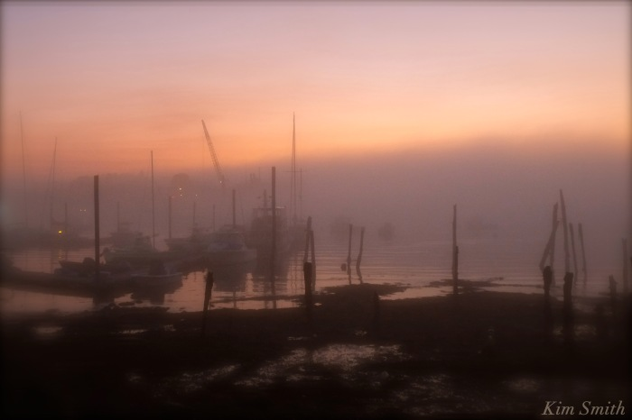 foggy-gloucester-harobr-3-copyright-kim-smith
