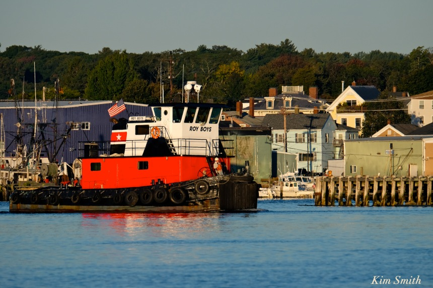 roys-boys-gloucester-harbor-copyright-kim-smith