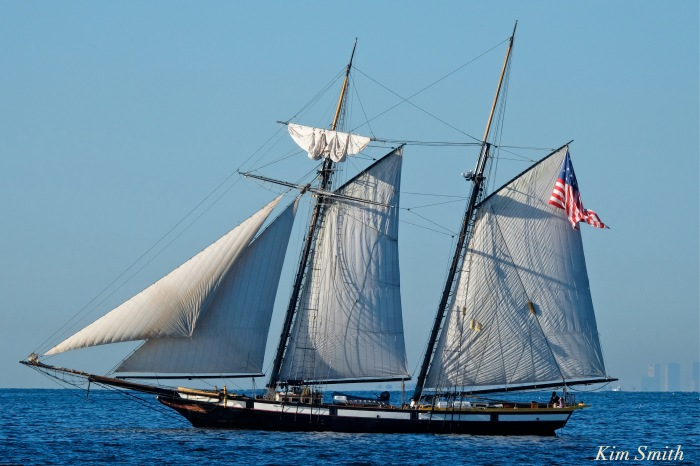 schooner-lynx-gloucester-boston-skyline-copyright-kim-smith