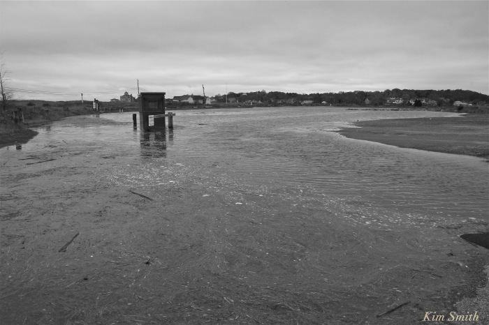 good-harbor-beach-king-tide-gloucester-ma-parking-lot-flooding-2-copyright-kim-smith