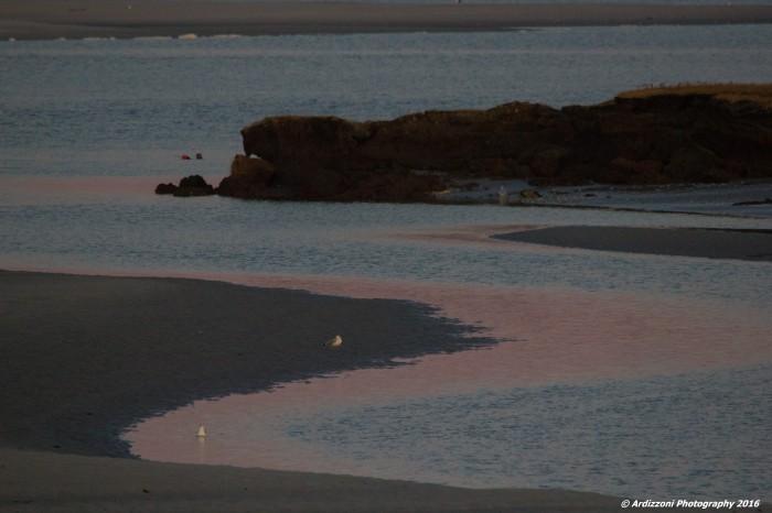 november-12-2016-pink-sand-and-ocean