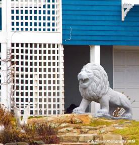 november-20-2016-the-roar-of-the-lion-near-long-beach