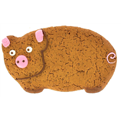 image_on_food_iced_gingerbread_pig