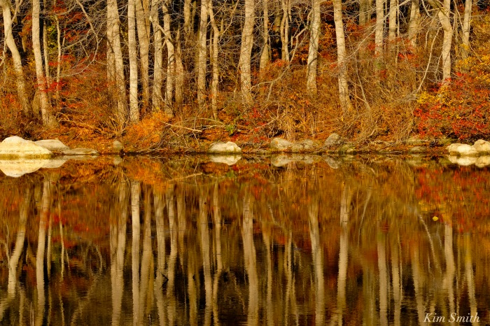 niles-pond-reflections-copyright-kim-smith