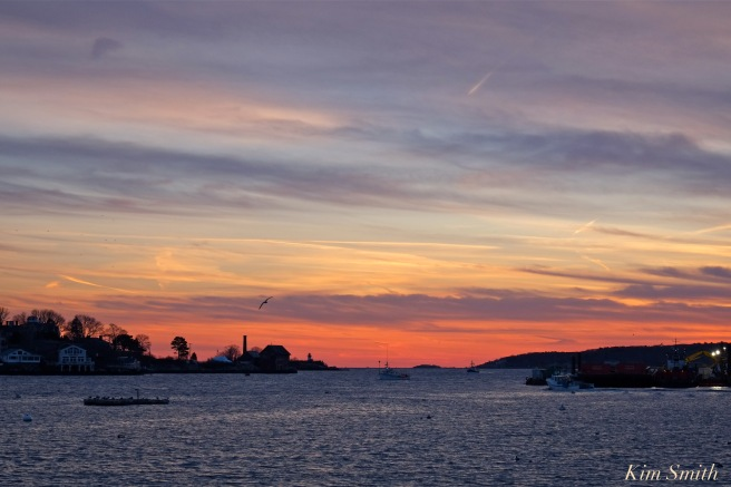 gloucester-harbor-2-sunset-copyright-kim-smith