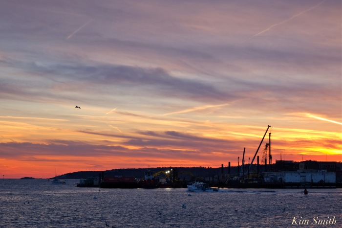 gloucester-harbor-sunset-3-copyright-kim-smith